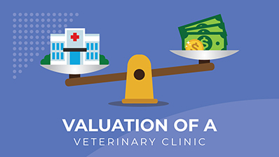 Valuation of a Veterinary Clinic