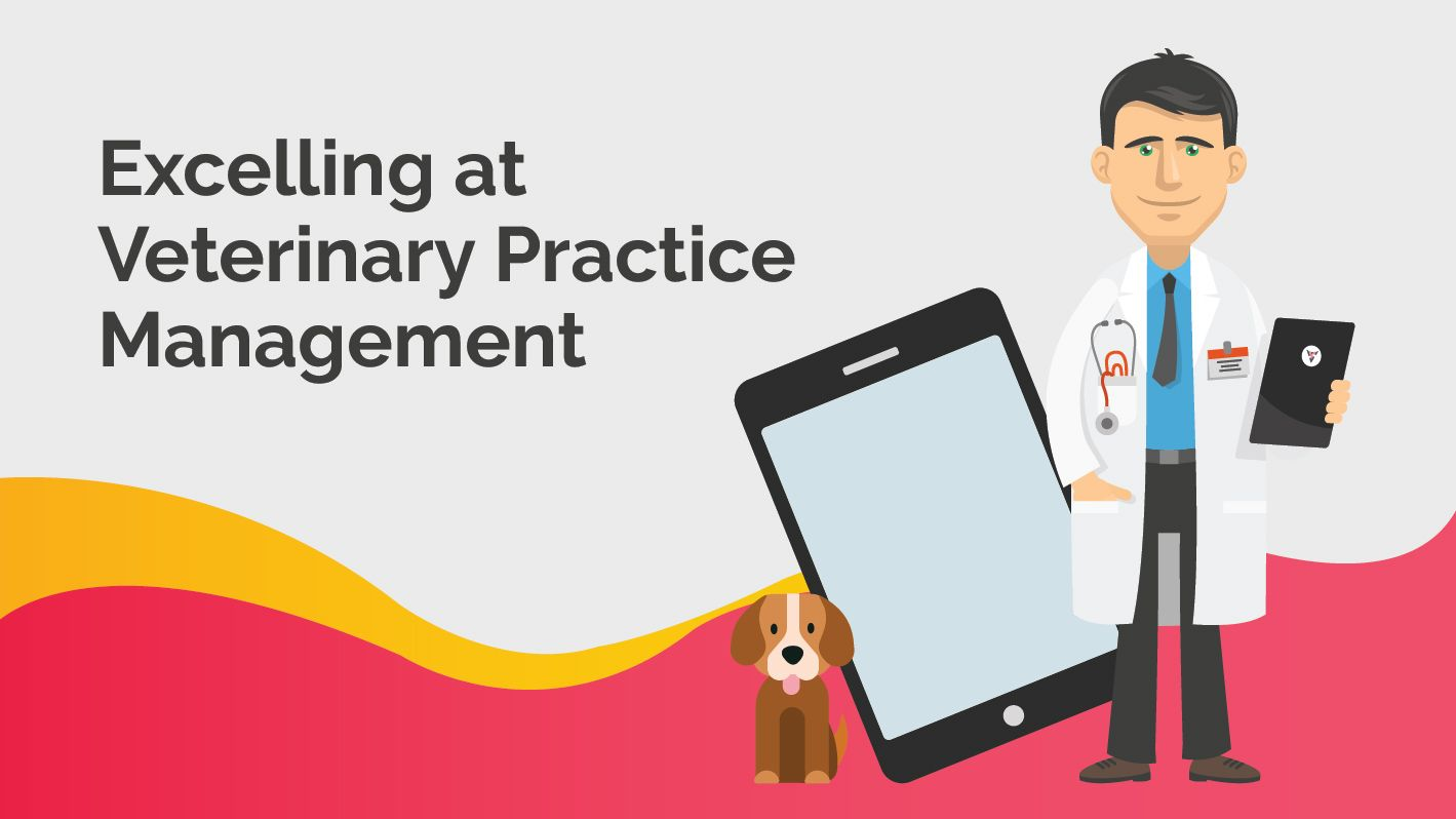What is Veterinary Practice Management and how to excel at it ?