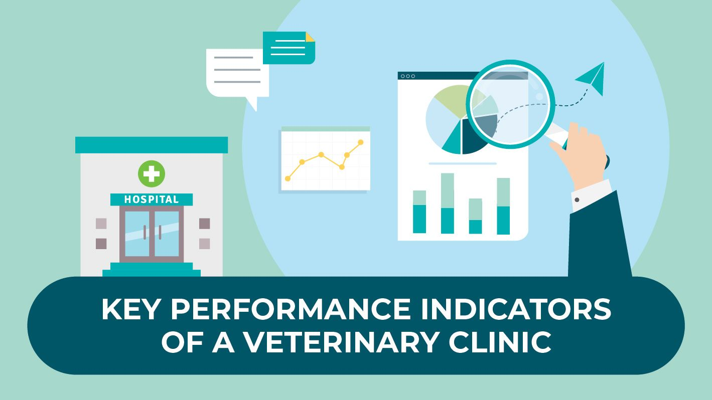 Key Performance Indicators of a Veterinary Clinic