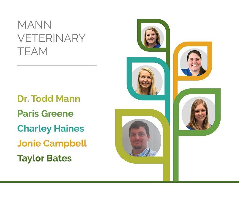 Mann Veterinary Staff