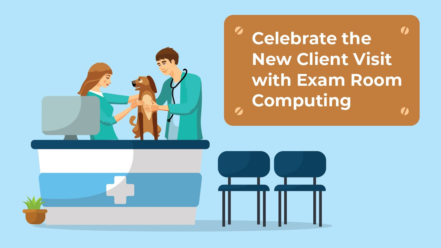 veterinary exam room computing